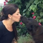 Teach Your Dog to Give Kisses