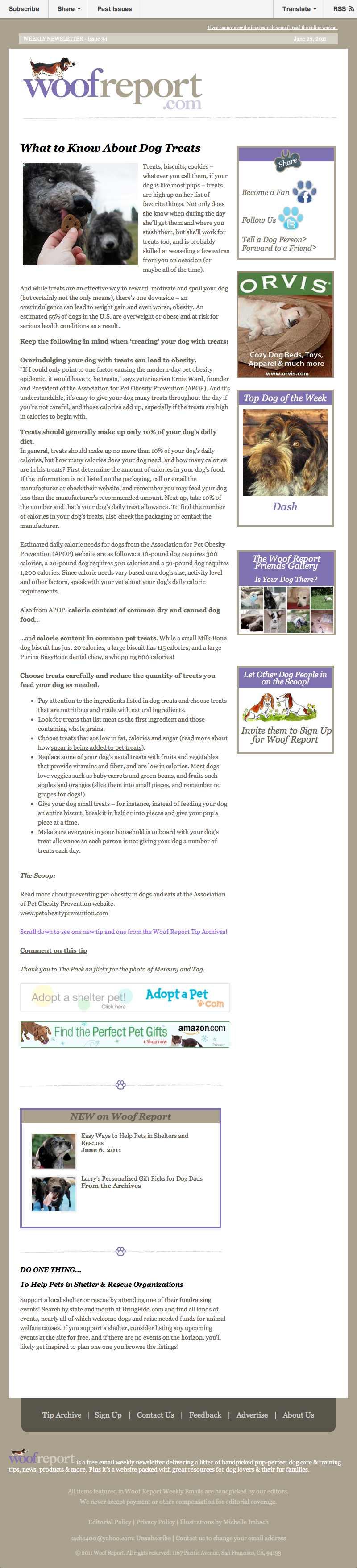 woofreport-dog-email-newsletter-sample