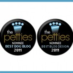 Woof Report is Nominated for Two Pettie Awards!