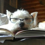 Top Picks from Library Dogs, Find Dog Books by Breed