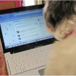 Top Pet Sites to Browse and Bookmark