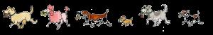 Woof-Report-dog-flowers