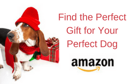 Find the Perfect Gift for Your Dog