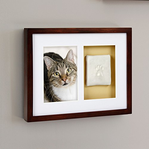 Pearhead Dog Or Cat Paw Prints Pet Wall Frame With Clay