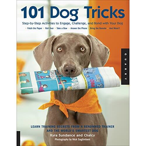 Great Dog Books