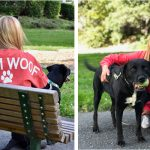 Our Exclusive Spirit Jerseys® for Dog Moms are Here!