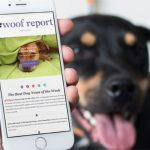 The Woof Report Newsletter is Back!