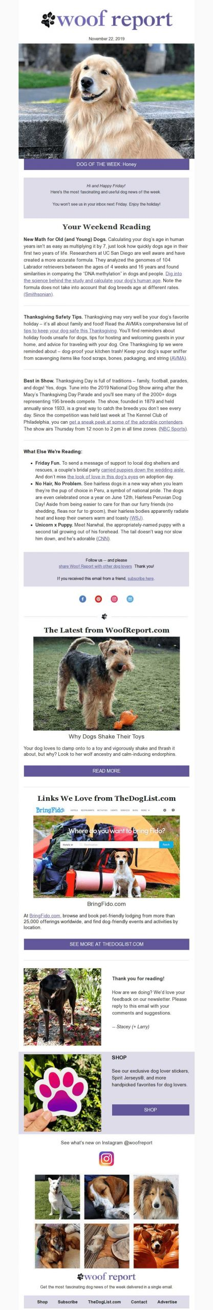 Woof Report Sample Dog Email Newsletter