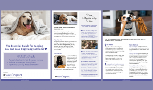 Guide to staying happy and healthy at home with your dog | Woof Report
